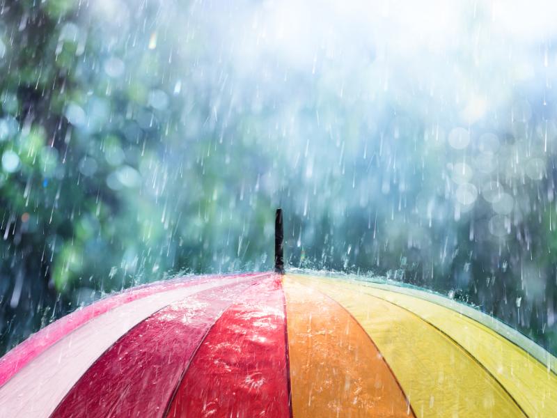 Le raccordement de l'eau pluviale