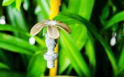 Fonctions et entretiens des filtres à eau de pluie