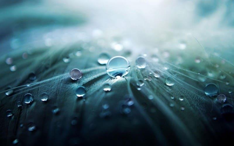 valorisation eau de pluie