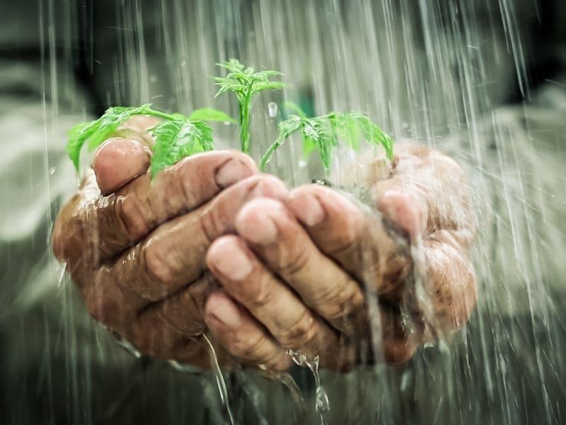 filtres et eau de pluie