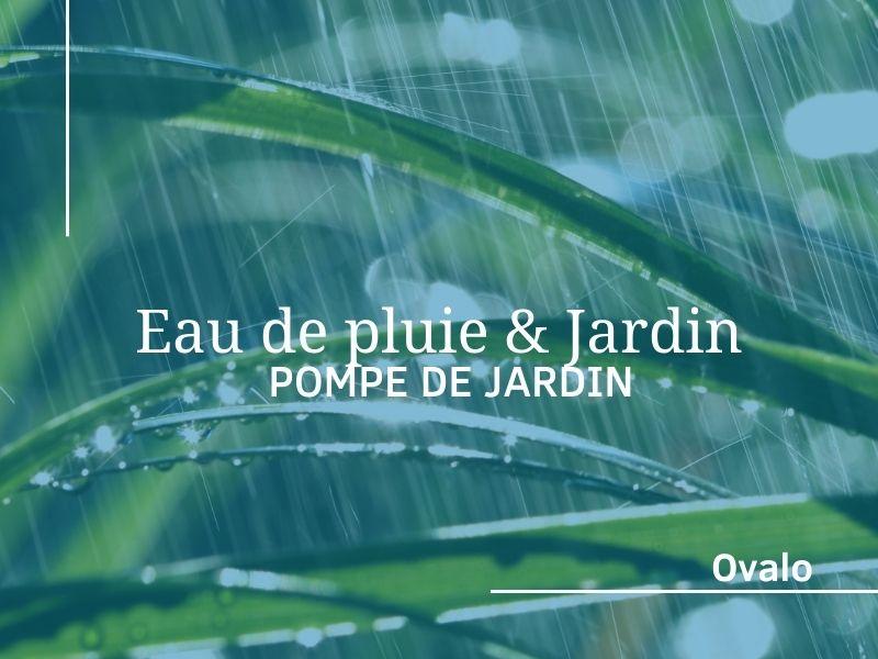 Eau de pluie pour le jardin : installation d'une pompe de jardin