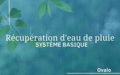 Installation d'un système de récupération d'eau de pluie basique